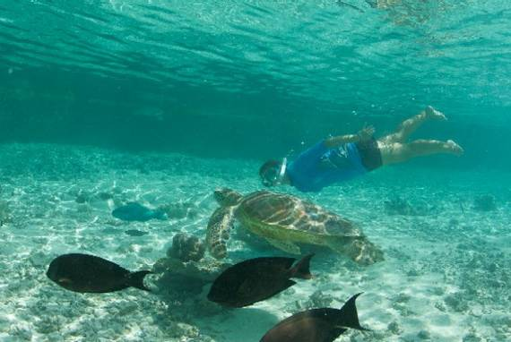 Best-Overwater-Bungalows-In-Tahiti-Le-Meridien-Bora-Bora-_32
