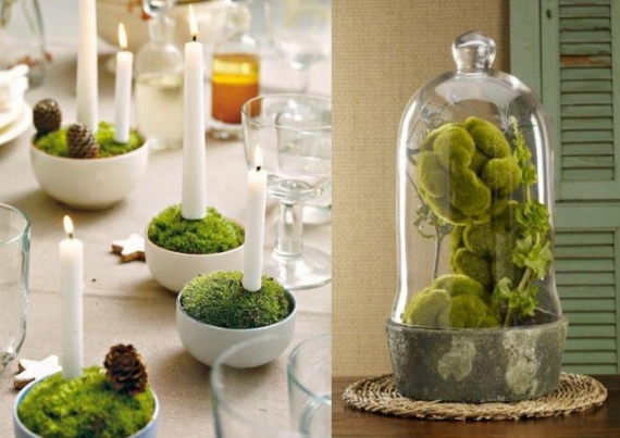 Fresh Spring Decorations Ideas - Decorate And Tinker With Moss_55