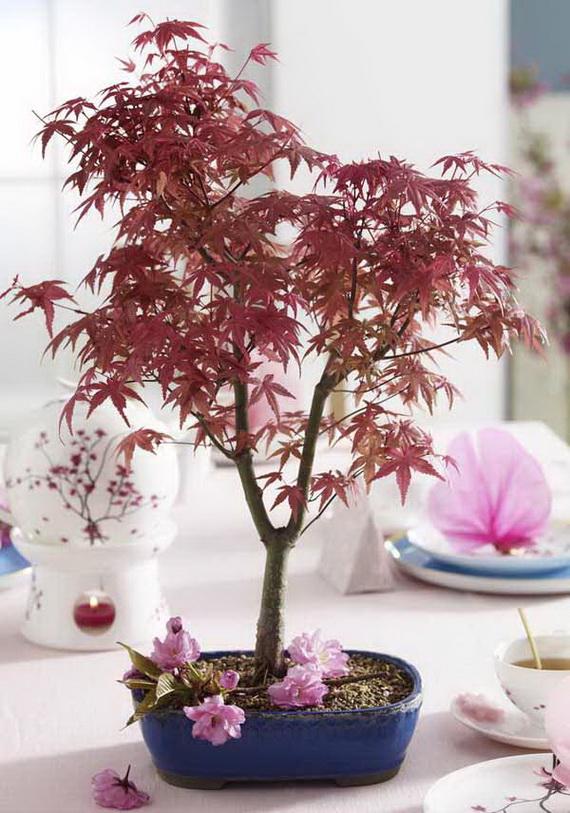 Tisch des Monats: Bonsai
