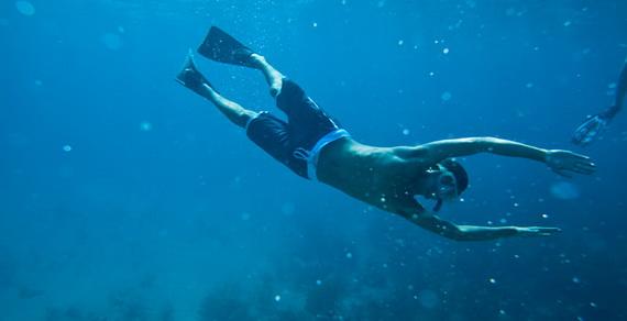 Explore The World Of Fowl Cay – No Longer Just A Dream Bahamas_09