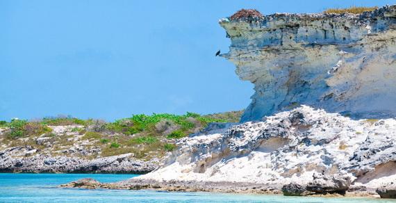 Explore The World Of Fowl Cay – No Longer Just A Dream Bahamas_13
