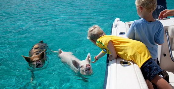 Make Memories that Will Last a Lifetime at Sweetwater Fowl Cay Resort Bahamas_04