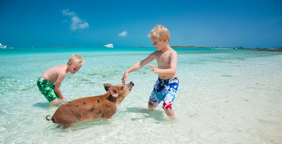 Make Memories that Will Last a Lifetime at Sweetwater Fowl Cay Resort Bahamas_09