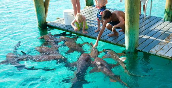 Make Memories that Will Last a Lifetime at Sweetwater Fowl Cay Resort Bahamas_17