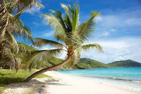 Might Be Time To Consider Mustique A Must - Visit Island_13