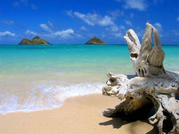 Hawaii-One-Of-The-Famous-Family-Holiday-Island-In-The-World-_16