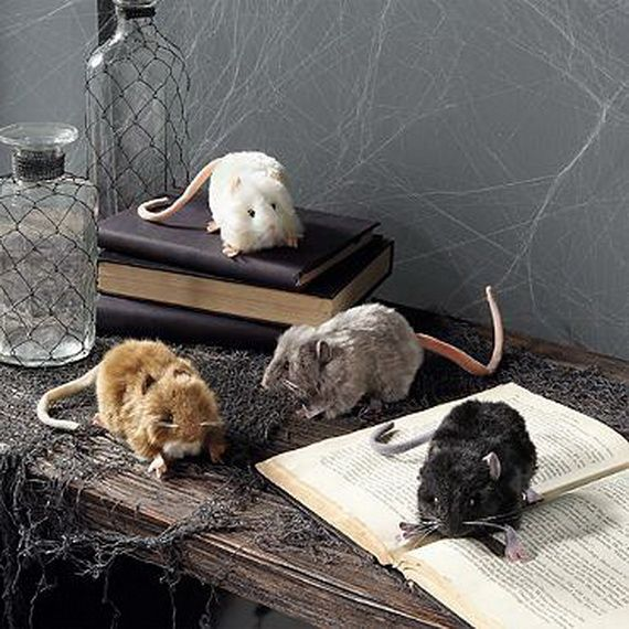 Halloween Accessories and Decorations_03