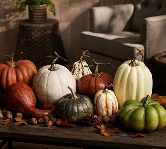 Tasty Fall Decoration Ideas For The Home _46