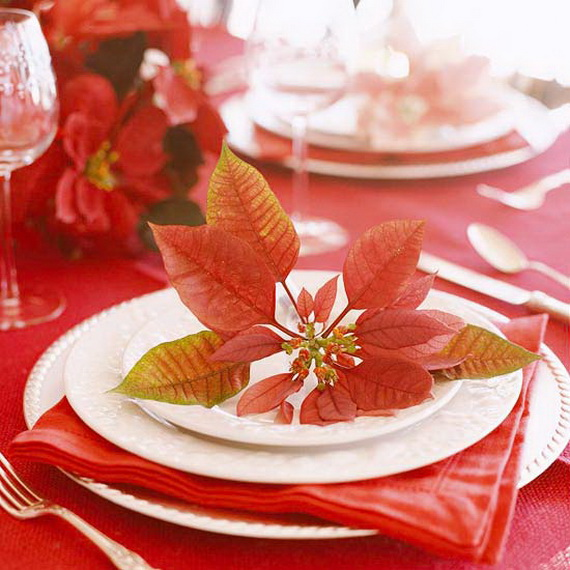Decorate Christmas with 45 ideas poinsettias the holidays' most loved plant_04