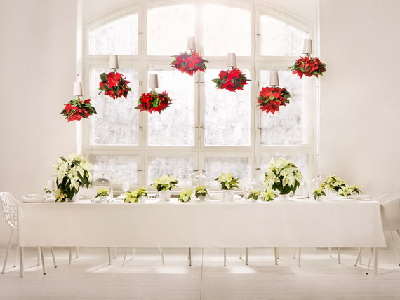 Decorate Christmas with 45 ideas poinsettias the holidays' most loved plant_39