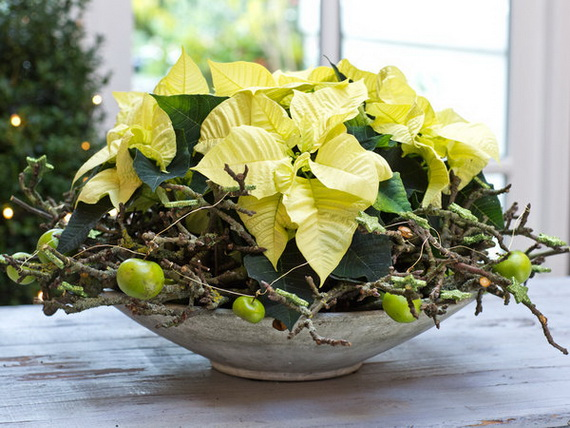 Decorate Christmas with 45 ideas poinsettias the holidays' most loved plant_42