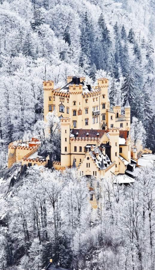 Hohenschwangau-Castle-8