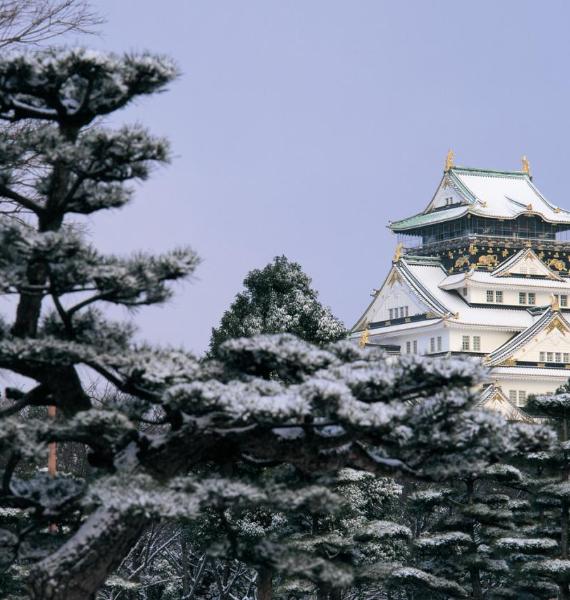 The Harmony and Beauty outside the Osaka Castle Japan (10)