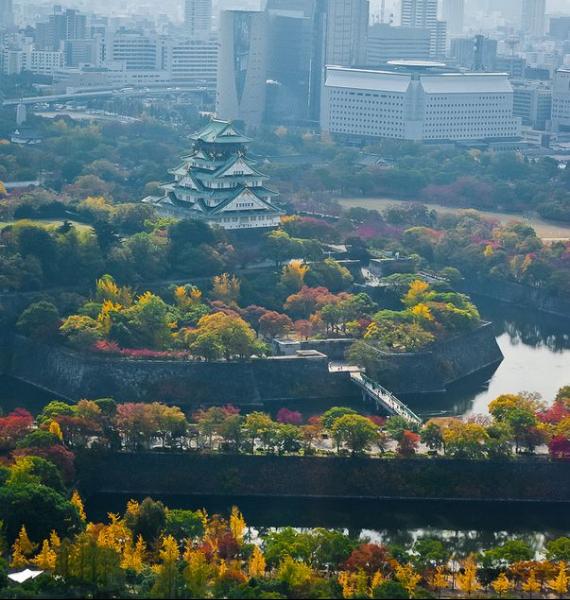 The Harmony and Beauty outside the Osaka Castle Japan (12)