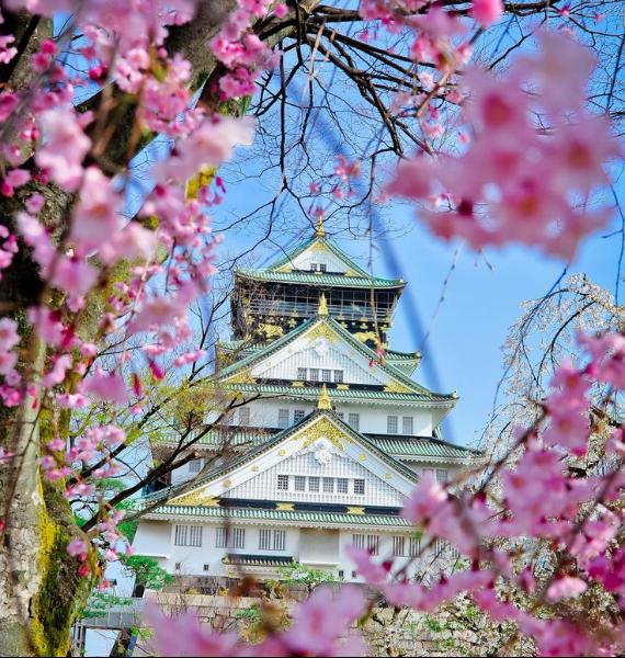 The Harmony and Beauty outside the Osaka Castle Japan (15)
