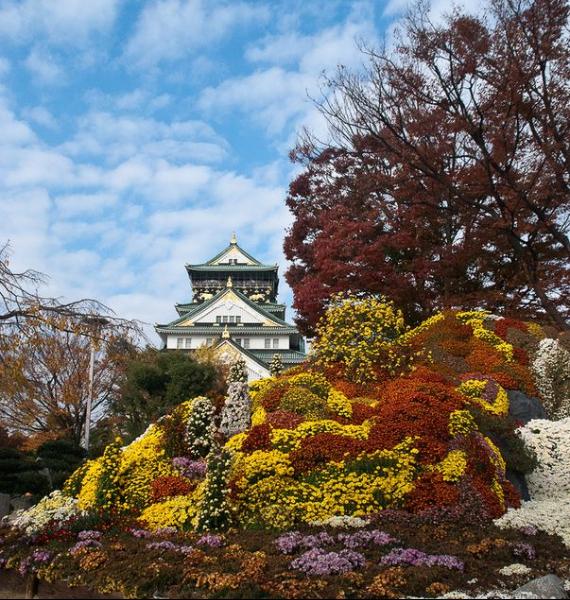 The Harmony and Beauty outside the Osaka Castle Japan (19)