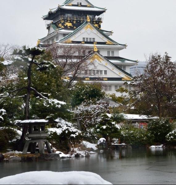 The Harmony and Beauty outside the Osaka Castle Japan (29)
