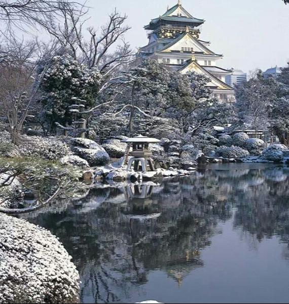 The Harmony and Beauty outside the Osaka Castle Japan (3)