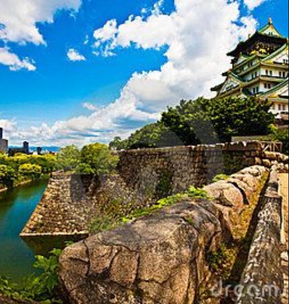 The Harmony and Beauty outside the Osaka Castle Japan (30)