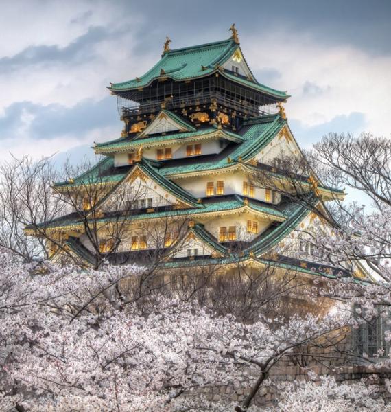The Harmony and Beauty outside the Osaka Castle Japan (7)