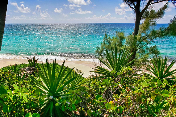 Living Large Within a Natural Paradise The Little Whale Cay in Bahamas (27)