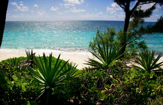 Living Large Within a Natural Paradise The Little Whale Cay in Bahamas (31)