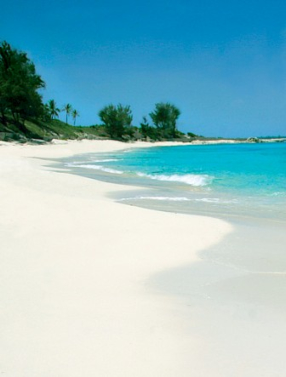 Living Large Within a Natural Paradise The Little Whale Cay in Bahamas (32)