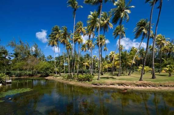 pink-cottage-exclusive-beachfront-garden-villa-rental-in-barbados-21