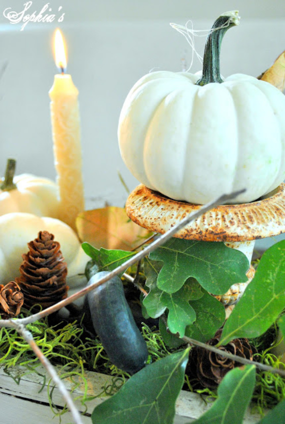Warm and Inviting Thanksgiving Centerpiece Ideas  (8)