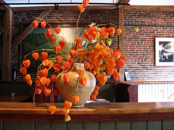 Cool Orange Fall &Thanksgiving Decorating Ideas with Chinese Lanterns  (1)