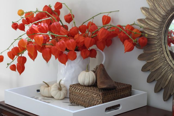Cool Orange Fall &Thanksgiving Decorating Ideas with Chinese Lanterns  (22)