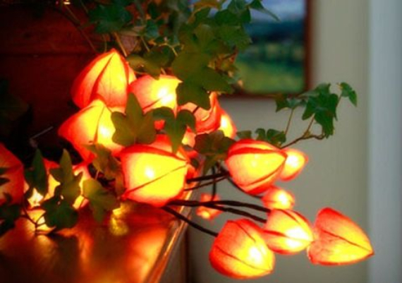 Cool Orange Fall &Thanksgiving Decorating Ideas with Chinese Lanterns  (3)