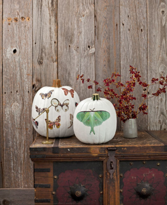 New Ways to Decorate Your Halloween Pumpkins (12)