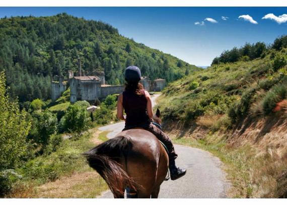 Chateau-De-Baloigne-Rhone-Alpes- (30)
