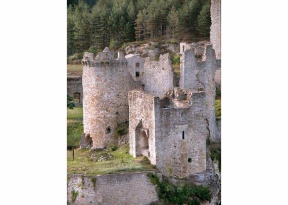 Chateau-De-Baloigne-Rhone-Alpes- (37)