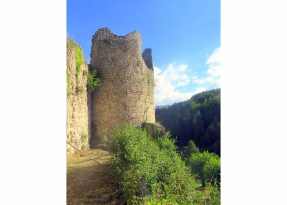 Chateau-De-Baloigne-Rhone-Alpes- (39)