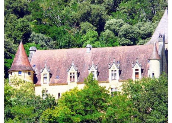 Chateau-de-Ruffiac-Dordogne- (17)