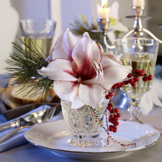 DIY Christmas Table Setting& Centerpieces Ideas (38)