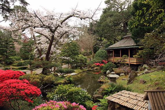 japanese_tea_garden_san_francisco1