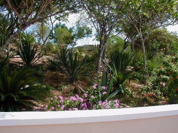 Holiday Home Evoking A Grandeur Feel Stargazer Villa (56)