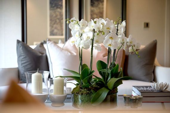 Pure Perfection Apartment In London- Holland Park, W11 (19)