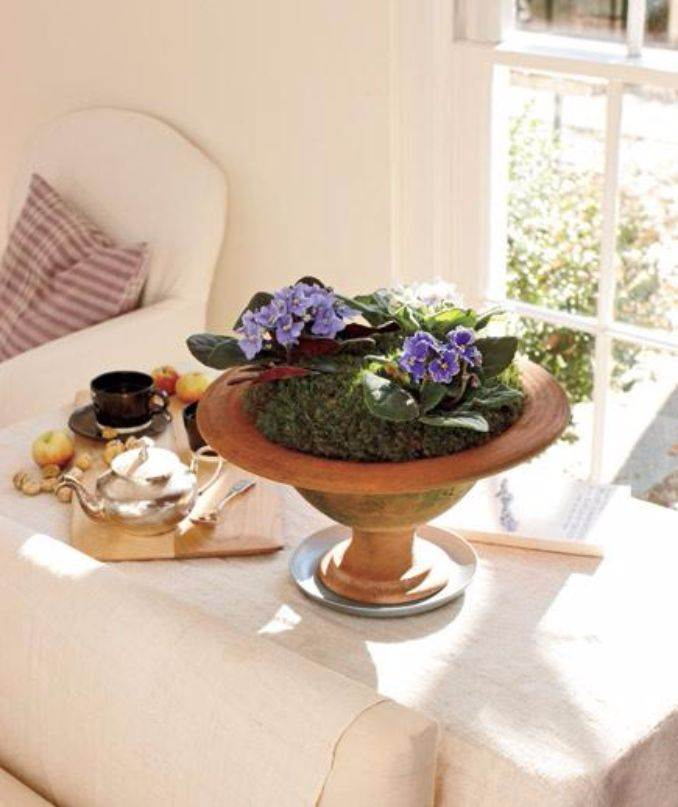 Bringing Spring Home 55 Gorgeous Greenery Touches Inspired by Nature (17)
