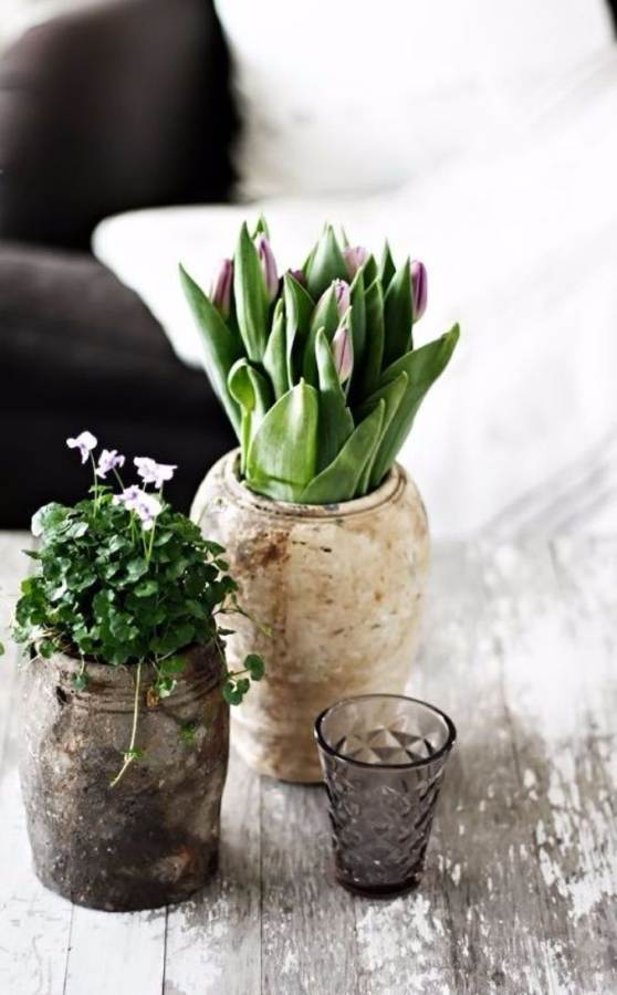 Bringing Spring Home 55 Gorgeous Greenery Touches Inspired by Nature (29)