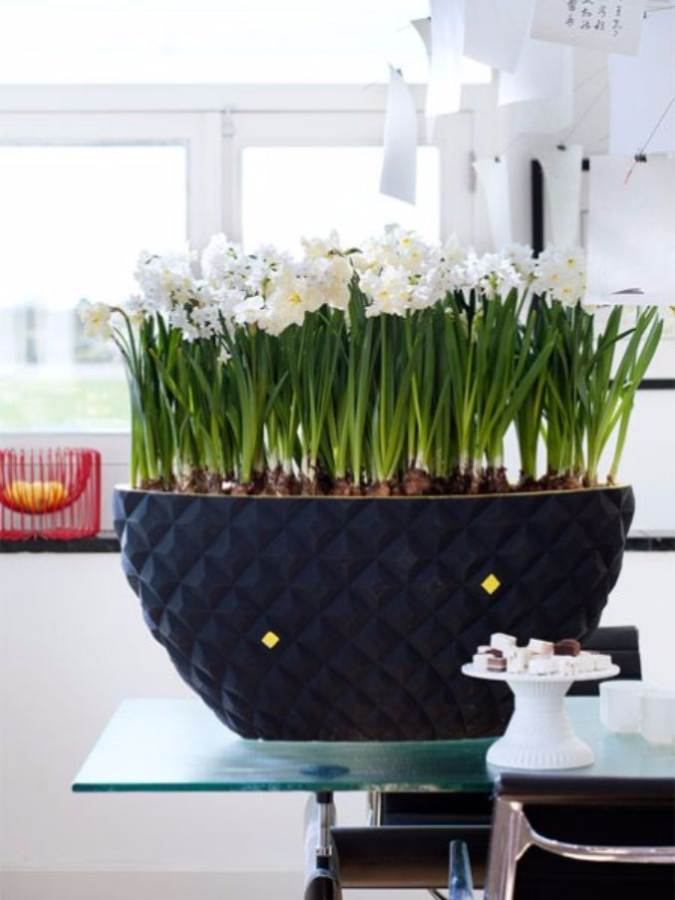 Bringing Spring Home 55 Gorgeous Greenery Touches Inspired by Nature (3)