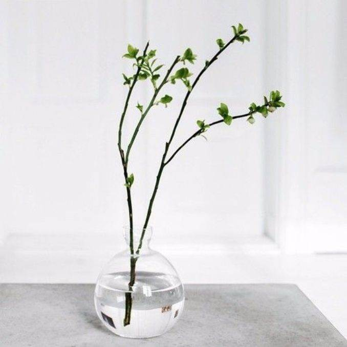 Bringing Spring Home 55 Gorgeous Greenery Touches Inspired by Nature (37)