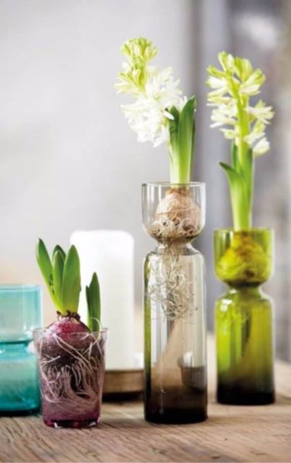 Bringing Spring Home 55 Gorgeous Greenery Touches Inspired by Nature (42)
