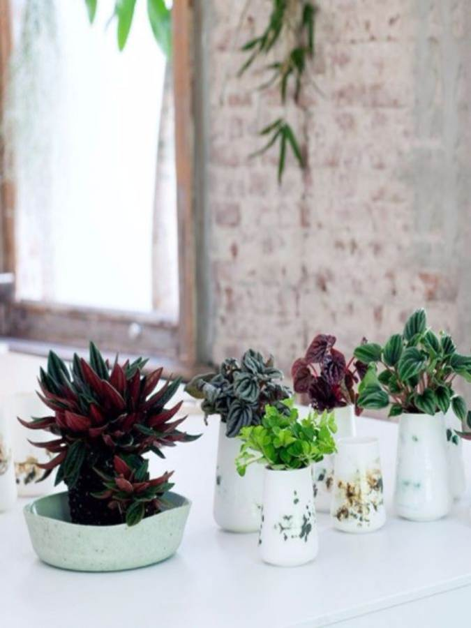 Bringing Spring Home 55 Gorgeous Greenery Touches Inspired by Nature (8)