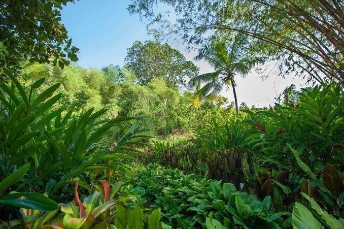 Tri Lanka SRI LANKAS STYLISH NEW RESORT (7)