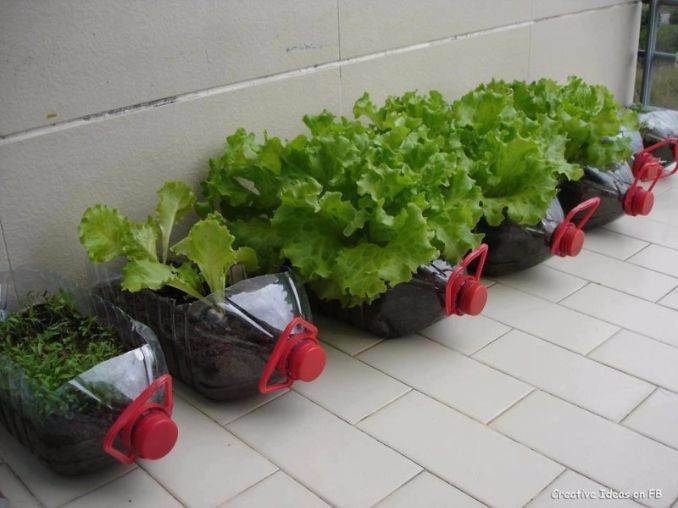DIY Creative Ideas of How To Recycle Old Bottles (76)